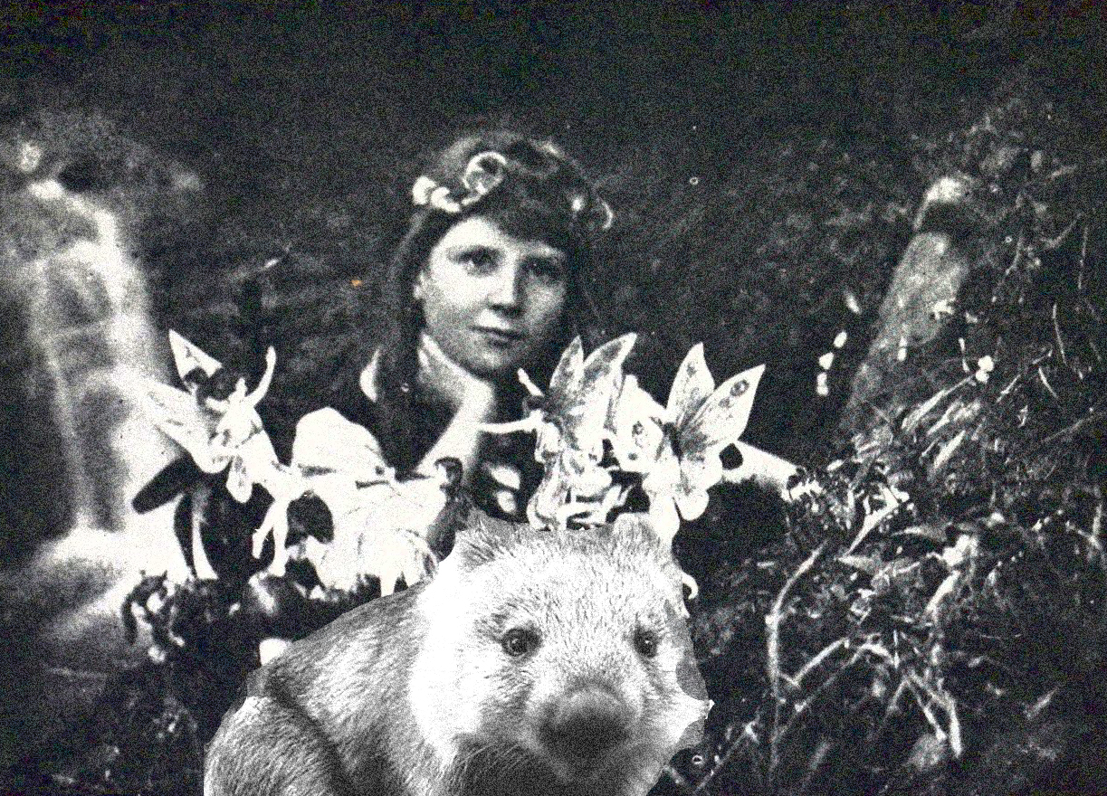 cottingley-wombat