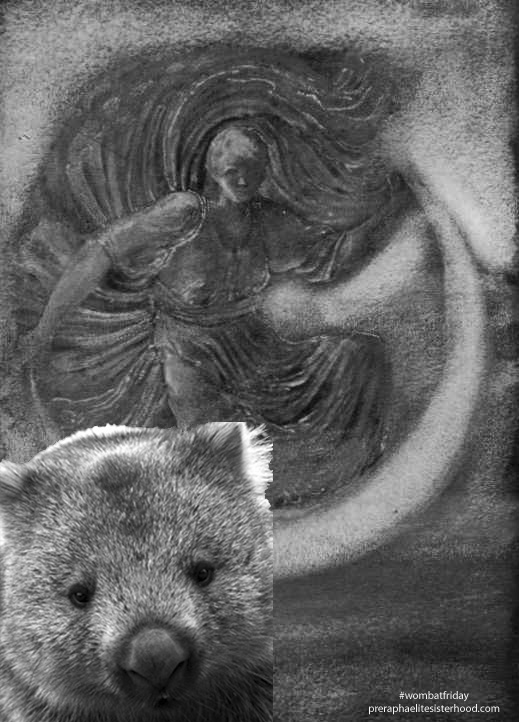 wombat-friday-luna