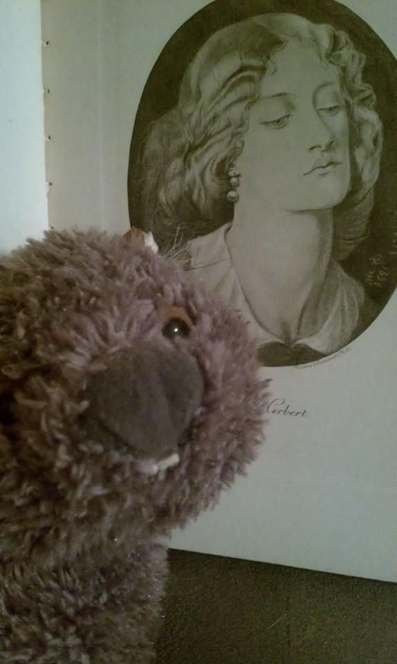 wombat-ruthherbert