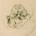 Rossetti's Wombat Seated in his Master's Lap 1871 by William Bell Scott 1811-1890