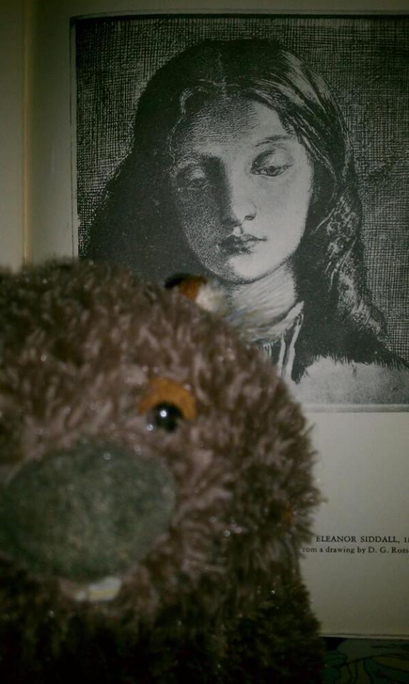 Stephanie-Pina-wombat28
