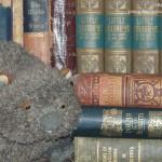 wombatfri-books