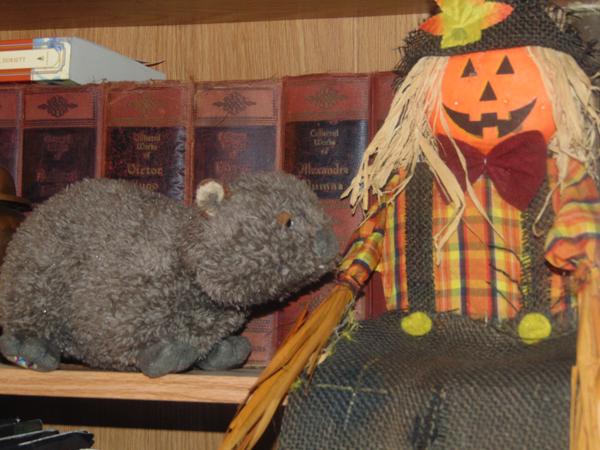 wombatscarecrow