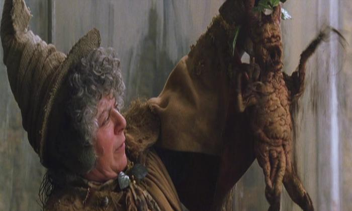 Miriam Margolyes as Professor Sprout in Harry Potter and the Chamber of Secrets