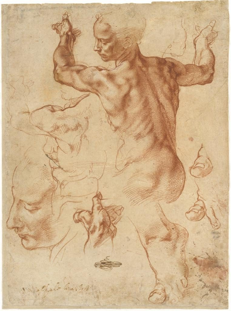 Michelangelo study for the Libyan Sibyl. Sistine Chapel ceiling.